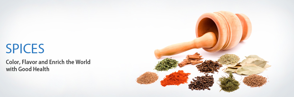 AISEF - All India Spices Exporters Forum